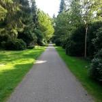 2015-08-23 17.14.41-Ohlsdorf cemetery