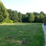 2015-08-23 17.54.42-Ohlsdorf park