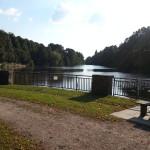 2015-08-23 17.56.29-Ohlsdorf park