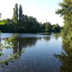 2015-08-23 17.59.40-Ohlsdorf park