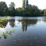 2015-08-23 17.59.57-Ohlsdorf park