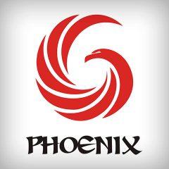 "Logo-ul echipei ""Phoenix 6"" din AIESEC Irlanda"